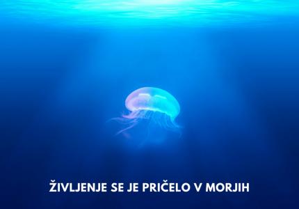 Življenje se je pričelo v morjih